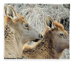 The Elk Of Winter  Fleece Blanket