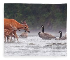 The Encounter Fleece Blanket
