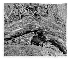 The Fallen - Dragon Fleece Blanket