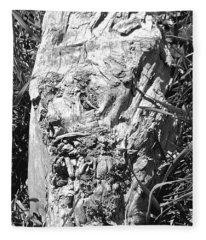 The Fallen - Unhidden Door Fleece Blanket