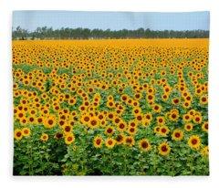 The Field Of Suns Fleece Blanket