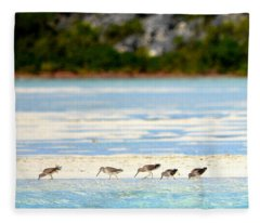 The Five Sandpipers Fleece Blanket