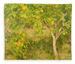 The Lemon Tree Fleece Blanket