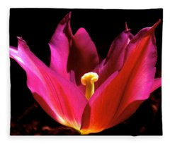 The Light Of Day Fleece Blanket