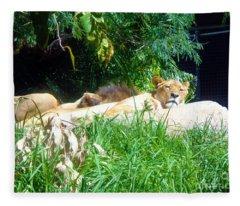 The Lion Awakes Fleece Blanket