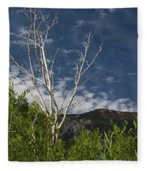 The Lonely Aspen  Fleece Blanket