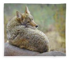 The Look Back Fleece Blanket