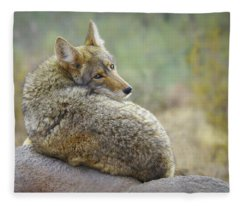 The Look Back Fleece Blanket