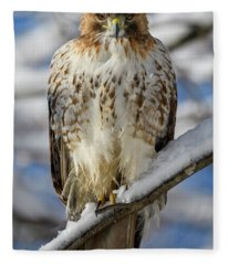 The Look, Red Tailed Hawk Fleece Blanket