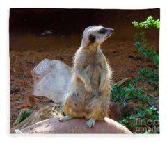 The Lookout - Meerkat Fleece Blanket