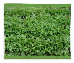 The Market Garden Landscape Fleece Blanket