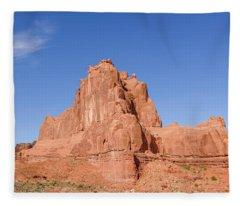 The Organ Fleece Blanket