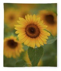 The Patch Of Sunflowers Fleece Blanket