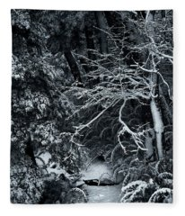 The Path To The Frozen Forest In The Argentine Patagonia Fleece Blanket