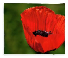 The Poppy Next Door Fleece Blanket