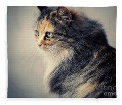 The Sad Street Cat Fleece Blanket