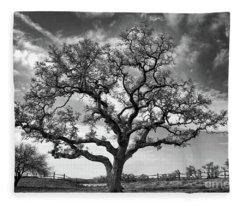The Sentinel Bw Fleece Blanket