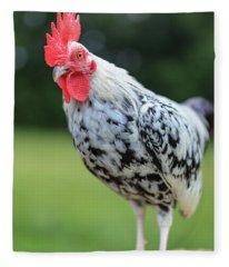 The Speckled Chicken Fleece Blanket