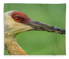 The Stare Fleece Blanket