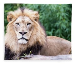 The Stare Down Fleece Blanket