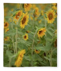 The Sunflower Patch Fleece Blanket