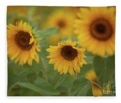 The Sunflowers In The Field Fleece Blanket
