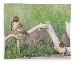 The Three Musketeers Fleece Blanket