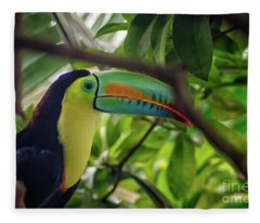 The Toucan Fleece Blanket