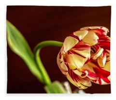 The Tulip's Bow Fleece Blanket