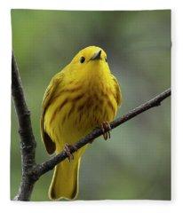 The Unintimidator Fleece Blanket