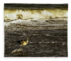 The Wading Willet  Fleece Blanket
