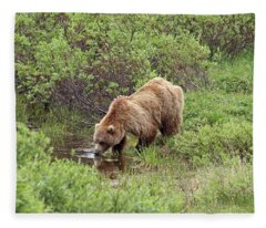 Thirsty Grizzly Fleece Blanket