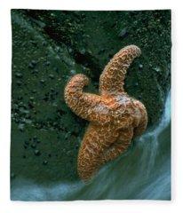 This Starfish Has A Good Grip Fleece Blanket