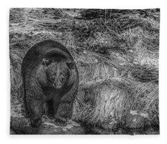 Thornton Creek Black Bear Fleece Blanket