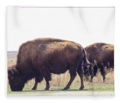 Three Buffalo Grazing Beside The Road In Tall Grass Pairie Swishing Their Tails Fleece Blanket