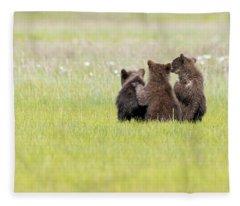 Three Cubs Watching Fleece Blanket