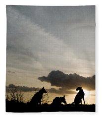 Three Dogs At Sunset Fleece Blanket
