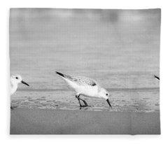 Three Hungry Little Guys Fleece Blanket