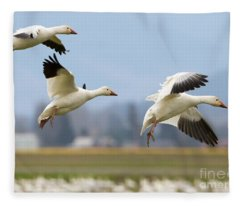 Three Landing Fleece Blanket