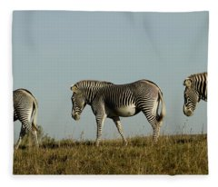 Three On The Horizon Fleece Blanket