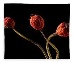 Three Rose Hips Fleece Blanket