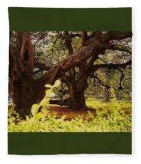 Through The Ages Fleece Blanket