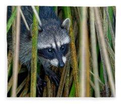 Through The Reeds - Raccoon Fleece Blanket