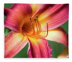 Tiger Lily Close Up Fleece Blanket