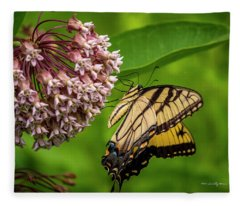 Tiger Swallowtail #210 Fleece Blanket