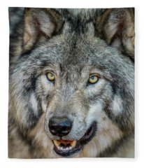 Timber Wolf Picture - Tw290 Fleece Blanket