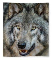 Timber Wolf Picture - Tw290 Fleece Blanket