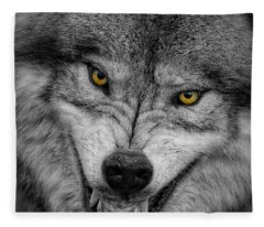 Timber Wolf Picture - Tw292 Fleece Blanket