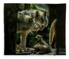 Timber Wolf Picture - Tw340 Fleece Blanket