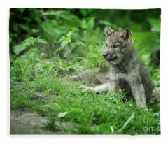 Timber Wolf Picture - Tw341 Fleece Blanket